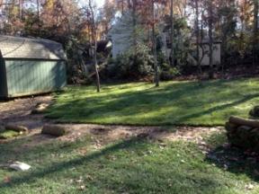 yard makeover